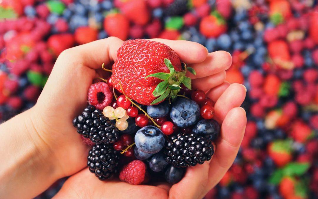 Nos amis les fruits rouges